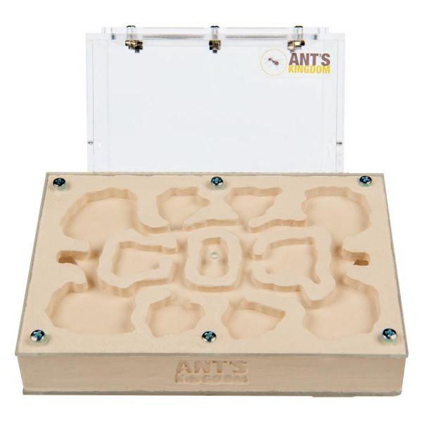 Ant Farm Gypsum Master Set