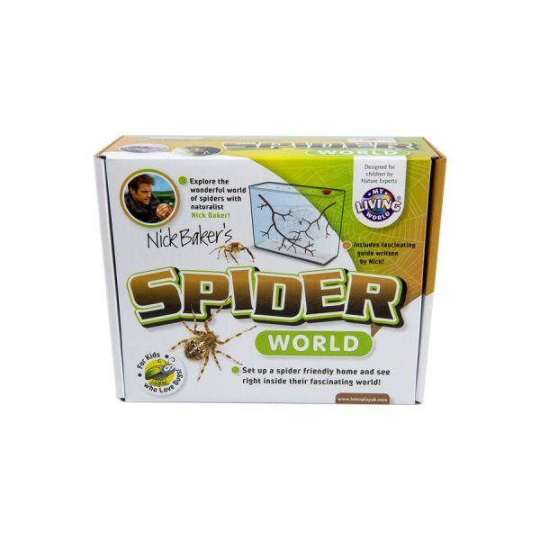 Spider world, spinnenbak