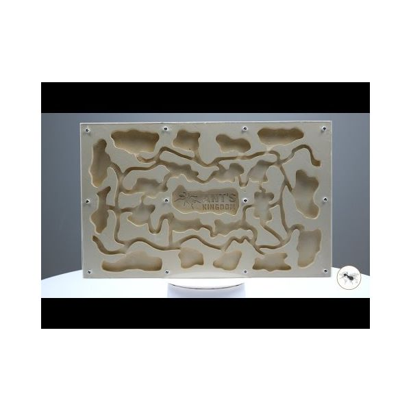 Ant Farm Gypsum Master Set