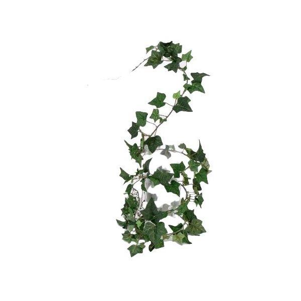 Art ivy, kunstklimop