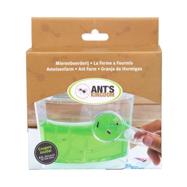 Antfarm gel mierenboerderij front