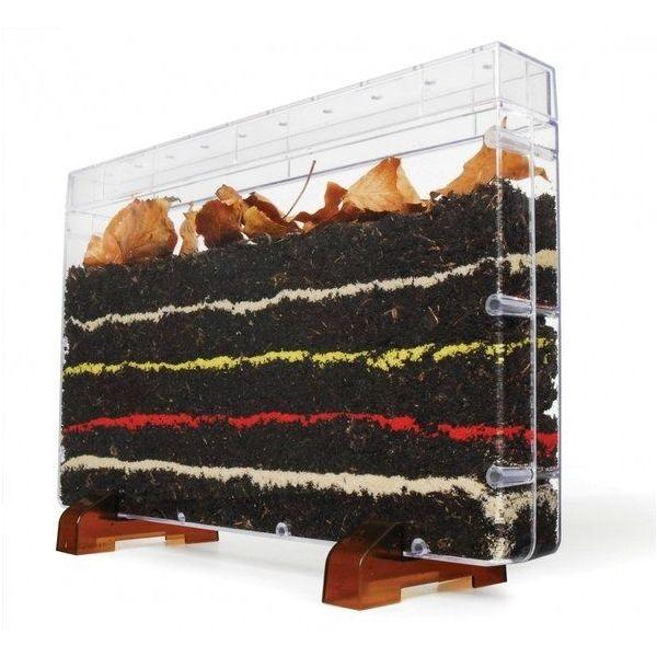 Worm world filled box